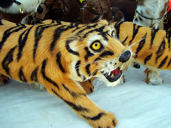 Tiger crafts